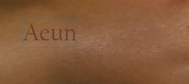 100-ways-to-write-aeun-12-californian-fb